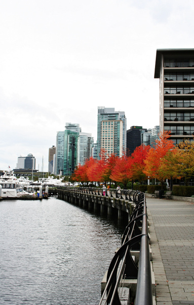 Vancouver 038 Harbor Green Park by StefsPictures