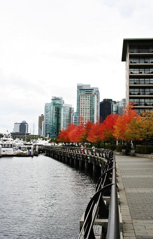 Vancouver 038 Harbor Green Park