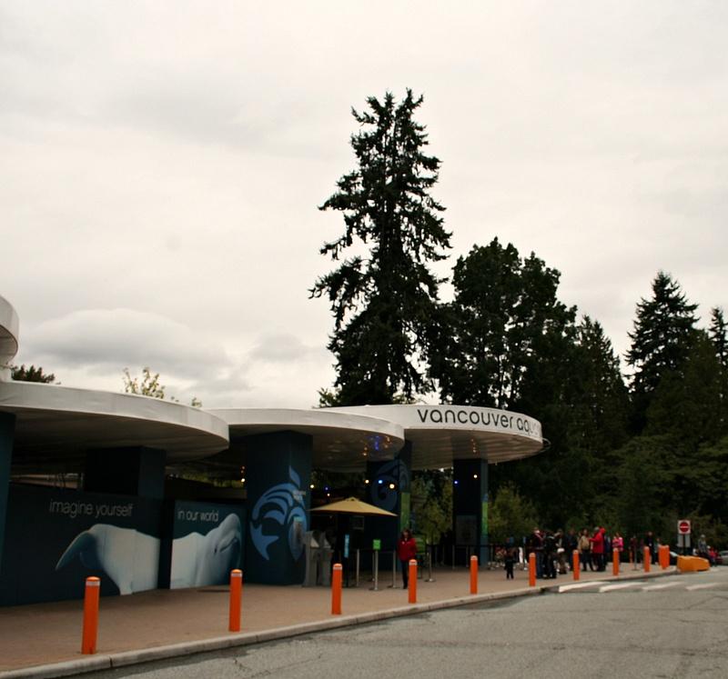 Vancouver 042 Aquarium