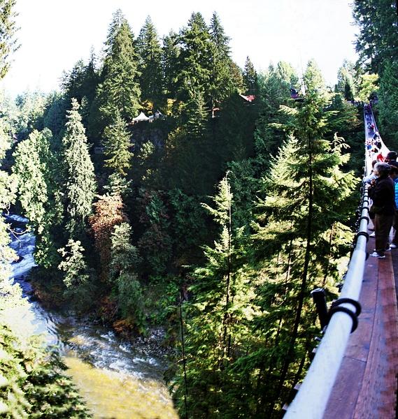 Vancouver 274 Suspension Bridge by StefsPictures