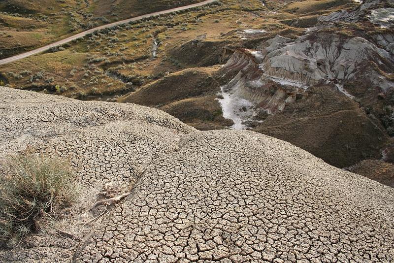 Dinoland 067 Trail Fossil Hunters
