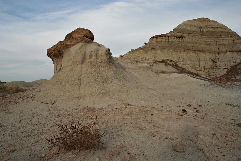 Dinoland 040 Trail Fossil Hunters