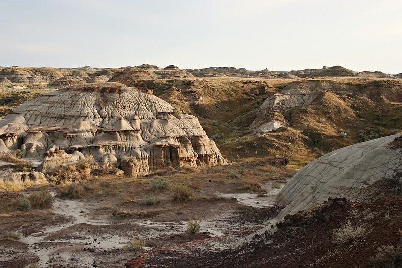 Dinoland 042 Trail Fossil Hunters
