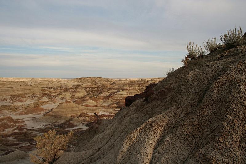 Dinoland 048 Trail Fossil Hunters
