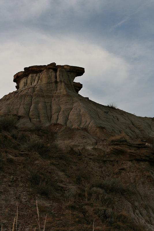 Dinoland 036 Trail Fossil Hunters