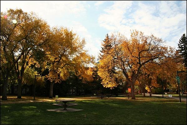 Edmonton UofA campus 11 main quad by StefsPictures