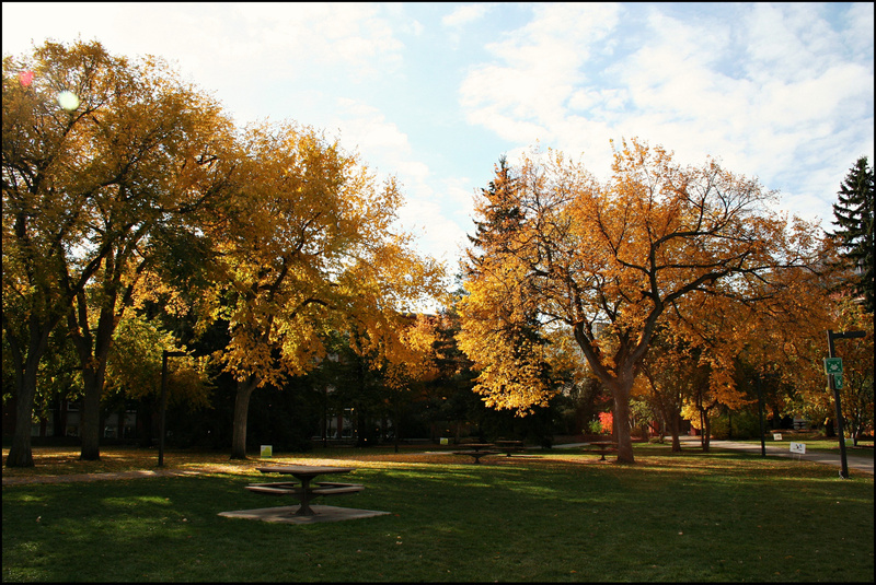 Edmonton UofA campus 11 main quad