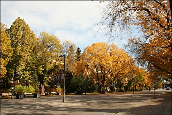Edmonton UofA campus 02 entrance by StefsPictures