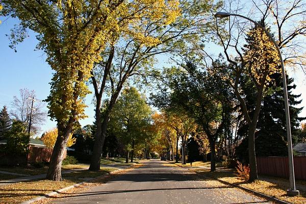 Edmonton 11 mein Viertel by StefsPictures