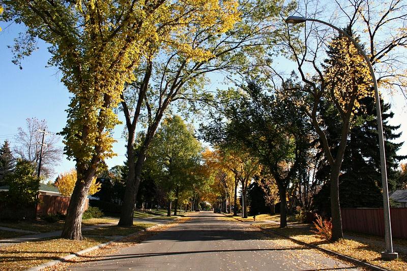 Edmonton 11 mein Viertel