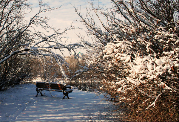 Edmonton Queens Park 01 by StefsPictures