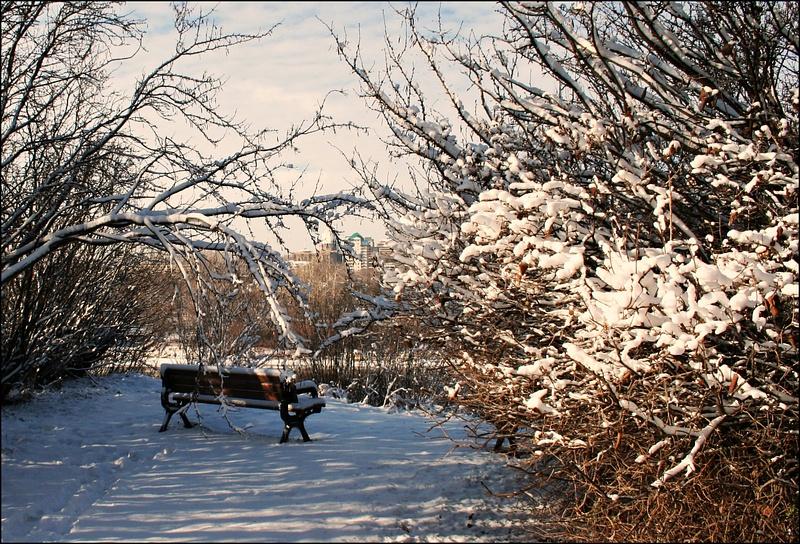 Edmonton Queens Park 01