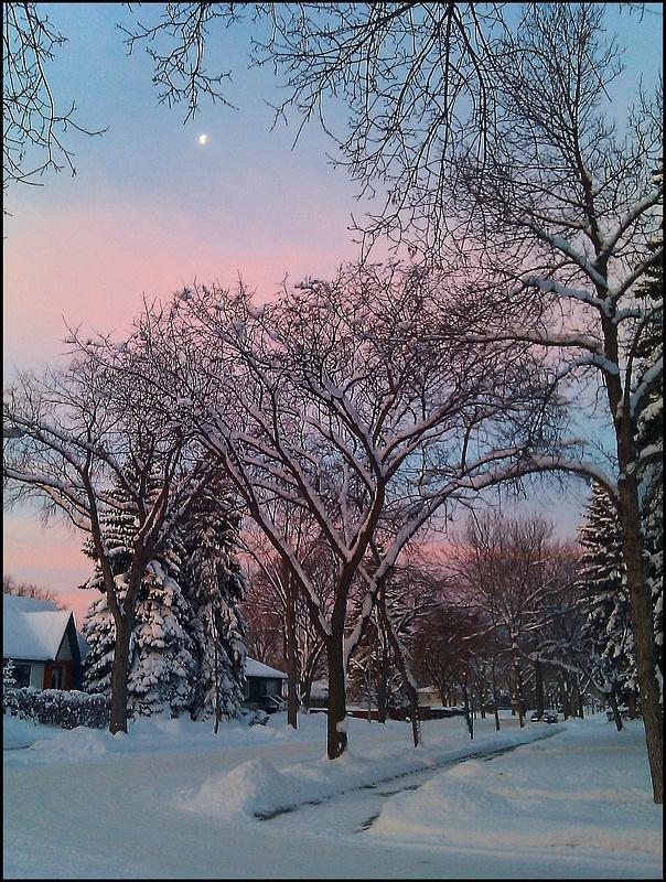 Edmonton Warten auf den Bus 22-11-2013
