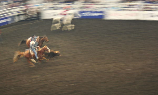 Rodeo 028 by StefsPictures