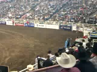 Rodeo_02
