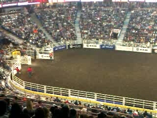 Rodeo_01