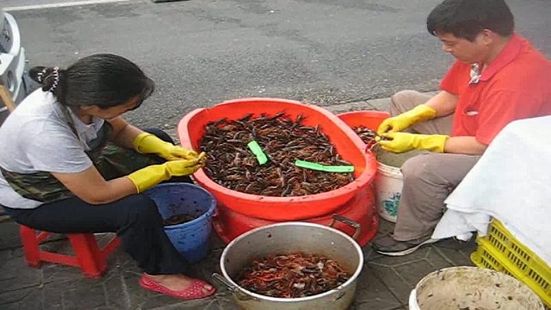 Hangzhou_FishMarket