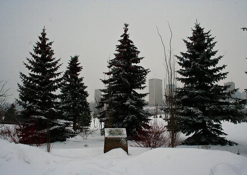 Edmonton 122