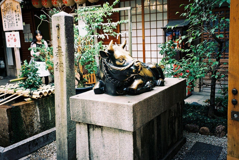 JP2010-24