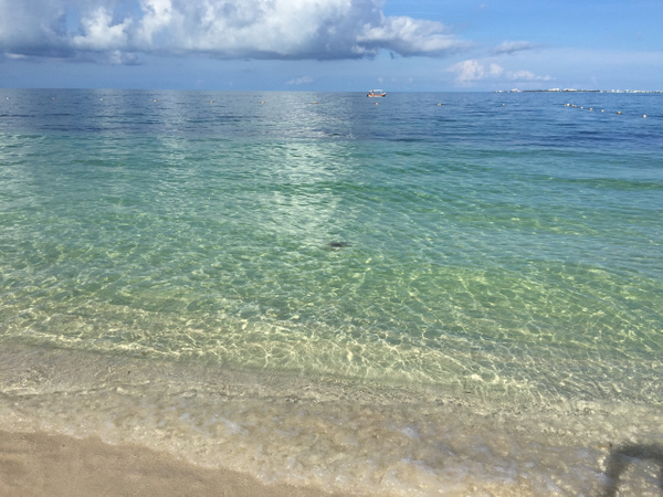 Finest Playa Mujeres 9-2017 by Lovethesun