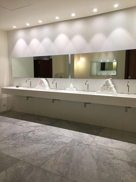 Public bathroom always meticulous by Lovethesun