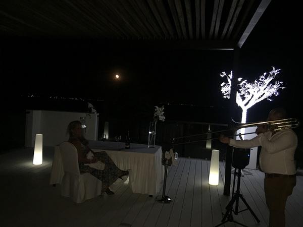 Soloist at dinner by Lovethesun