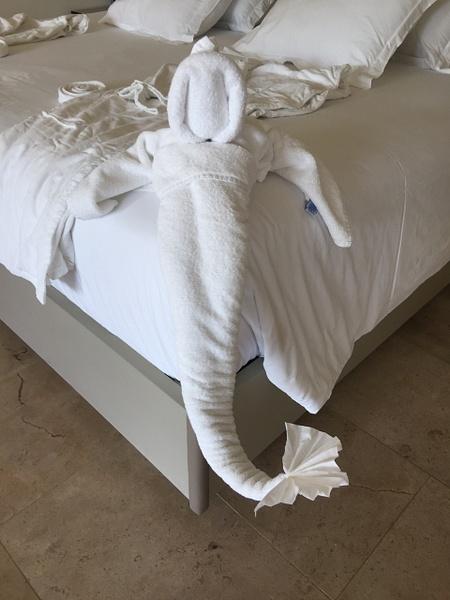 Towel Art - it is a mermaid by Lovethesun