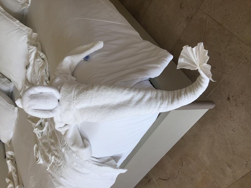 Towel Art - it is a mermaid