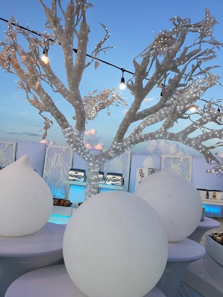White Night - beautiful! by Lovethesun