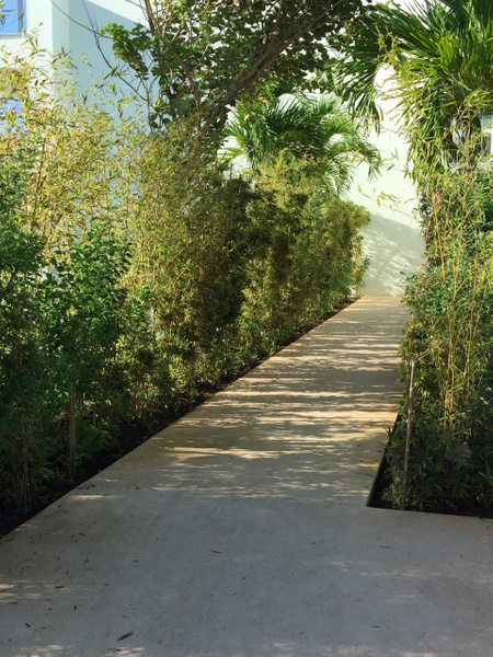 Walkway past EC Imperial suite - much more mature...