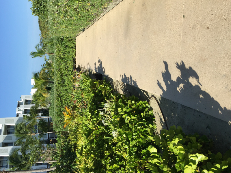 Walkway towards the sports area