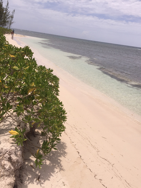 beach in front of EC deck area by Lovethesun