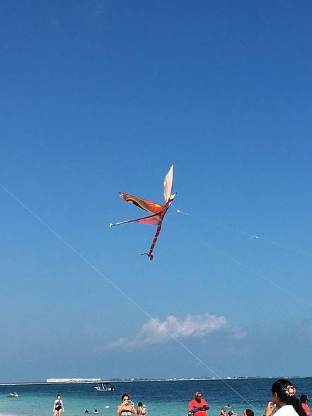 Flying Kites by Lovethesun
