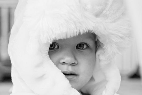 Fur Hood BW