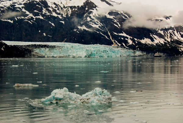IMGP9078-Glacier Bay by Buutopia
