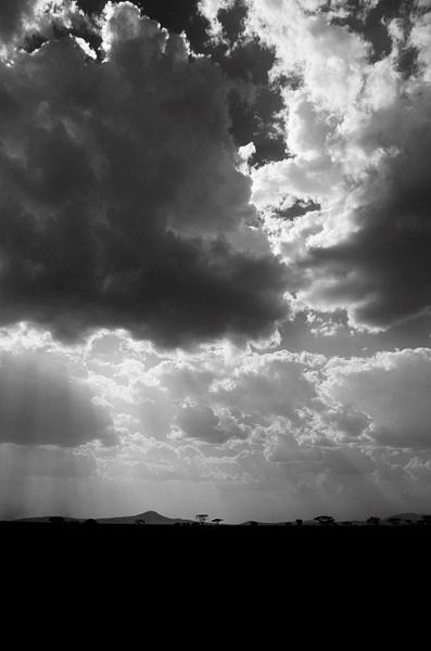 IMGP0702-Serengeti by Buutopia
