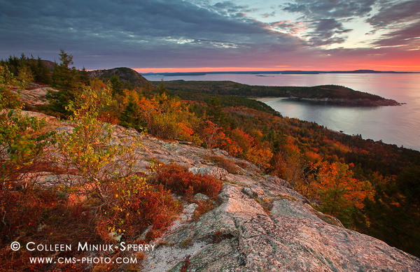 Acadia National Park-0197_c by Colleen Miniuk-Sperry