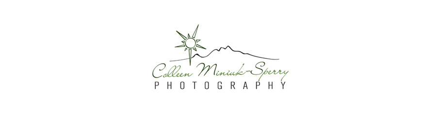 Colleen Miniuk-Sperry's Gallery
