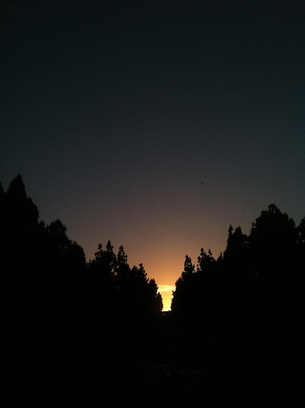 iPhone photo SP_8033686