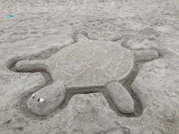 TurtleSandcastle-1 by RicThompson