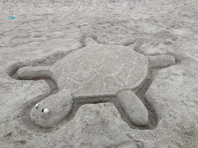 TurtleSandcastle-1