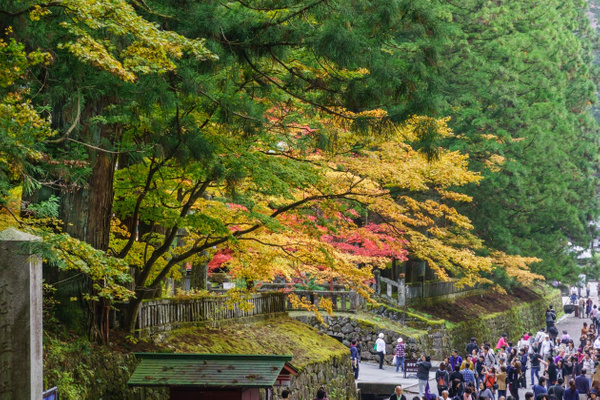 20131103D-NikkoTemple-54 by RicThompson