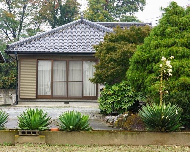 20131104-A-HomeStayDay6-16