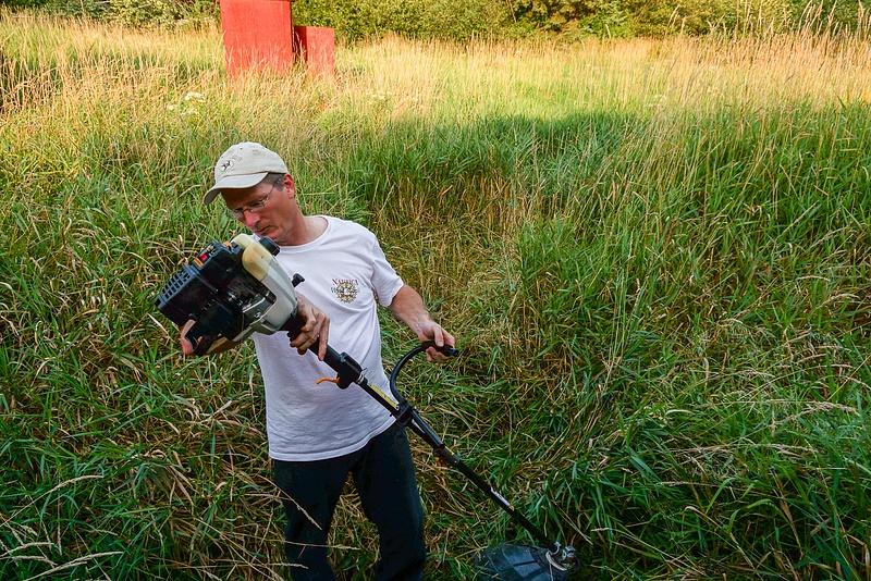 Cutting Grass-1