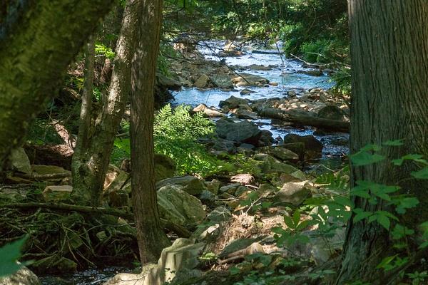 MountainStream-5 by RicThompson