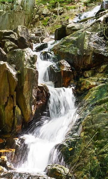 MountainStream-17 by RicThompson