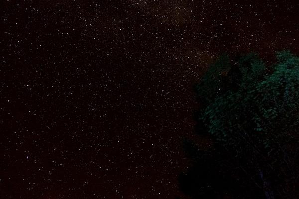 StarsAndMilkyWay-10 by RicThompson