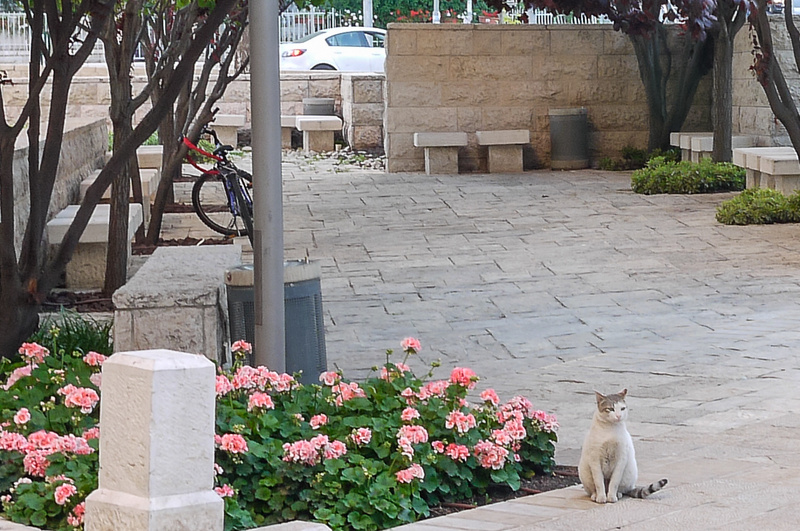 20130425D-JerusalemHotel-9