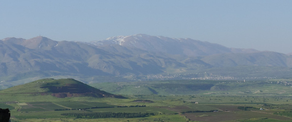 20130428G-MtBental-GolanHeights-17 by RicThompson
