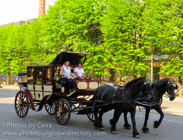 E horse and buggy by Carra Riley